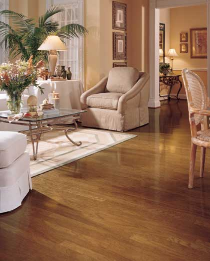 Living Room Designs With Hardwood Floor