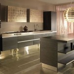 Nice Looking Contemporary Kitchen Designs For Your Home